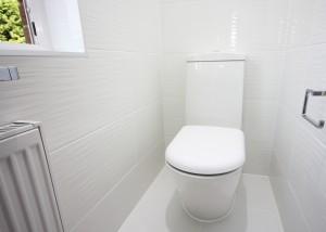 dansbathroom3