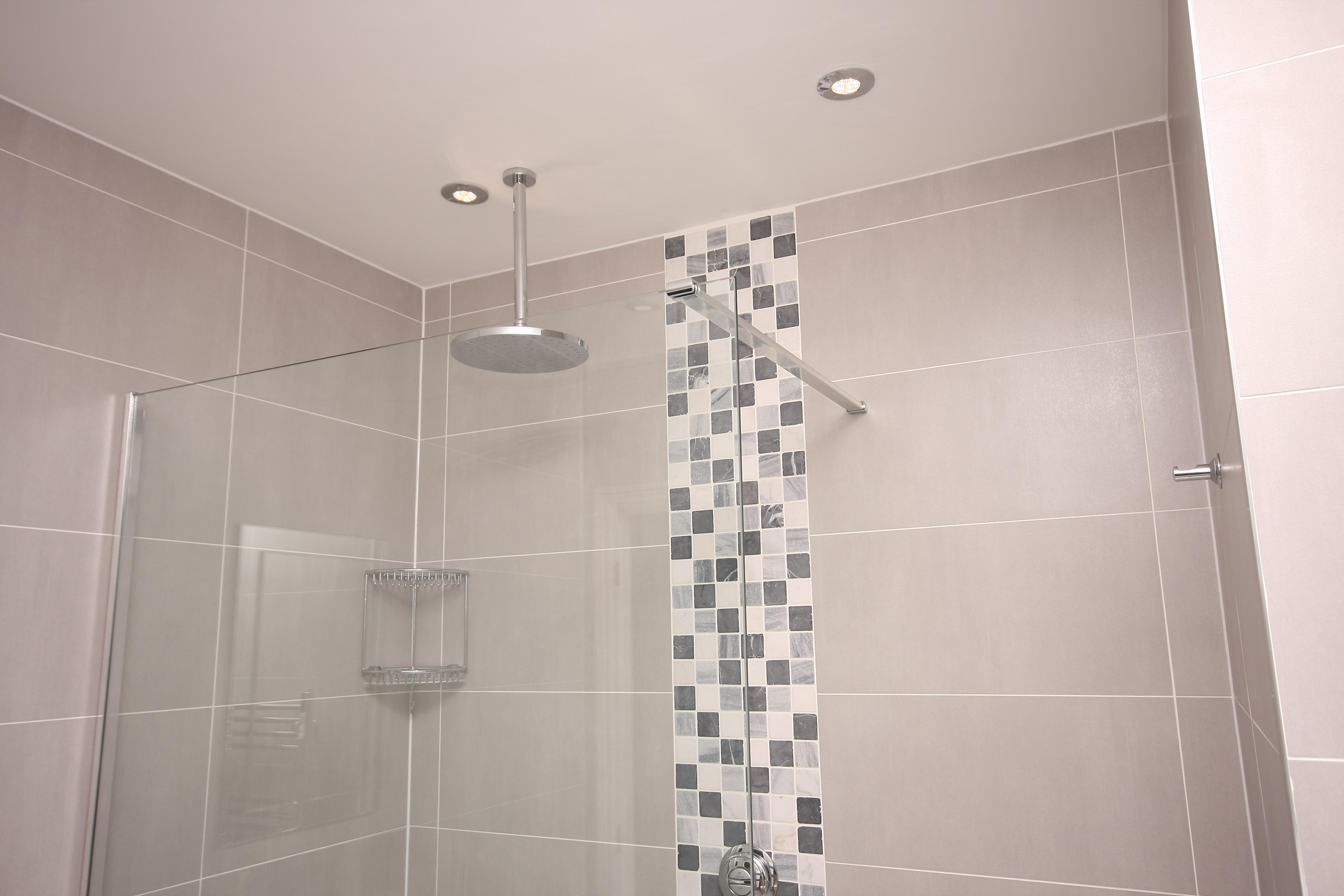 Bathroom ceiling rose